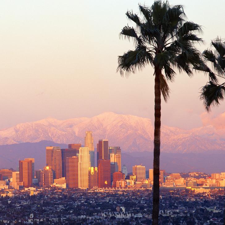 Des racines 100 % californiennes